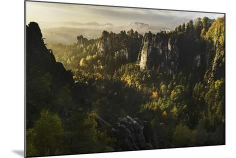 Forest Whispers-Karsten Wrobel-Mounted Photographic Print
