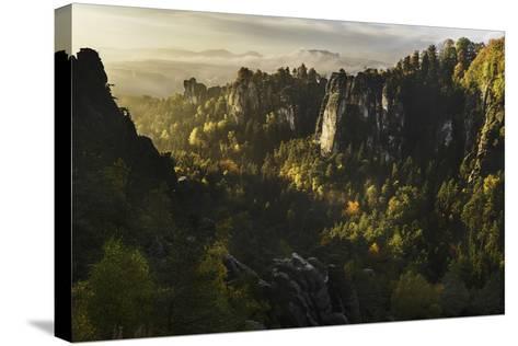 Forest Whispers-Karsten Wrobel-Stretched Canvas Print
