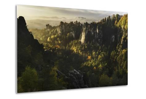 Forest Whispers-Karsten Wrobel-Metal Print