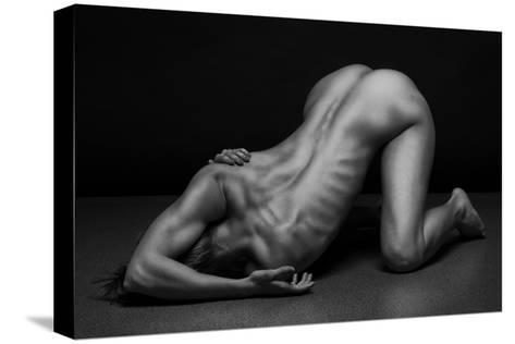 Bodyscape-Anton Belovodchenko-Stretched Canvas Print