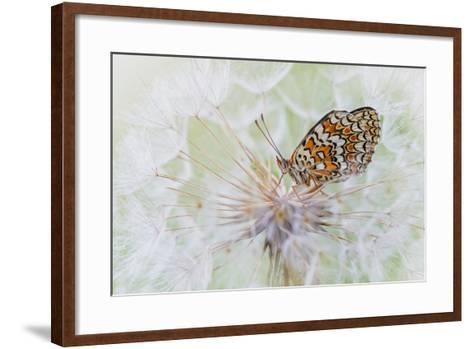 White Cloud-Roberto Marini-Framed Art Print