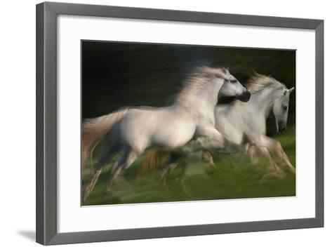 Gallop for Two-Milan Malovrh-Framed Art Print
