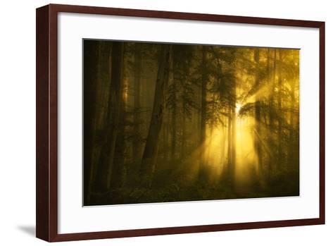 Yellow-Norbert Maier-Framed Art Print