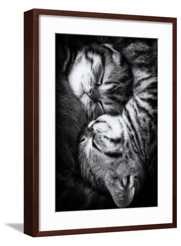 Yin and Yang-Andrea Jancova-Framed Art Print