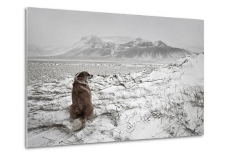 Snowstorm-Bragi Ingibergsson --Metal Print