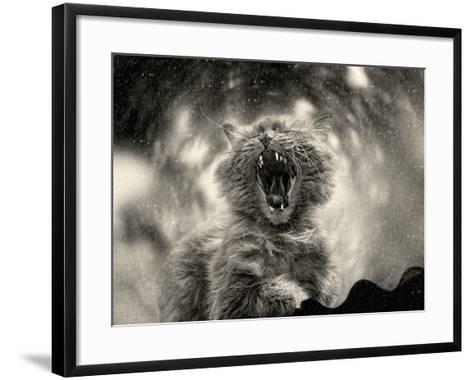 *******-Svetlana Melik-Nubarova-Framed Art Print