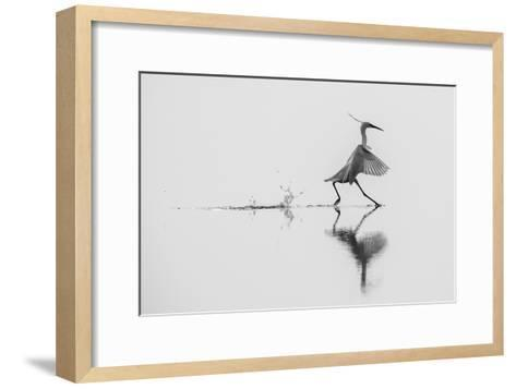 Dancing on the Water-mauro rossi-Framed Art Print