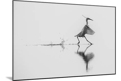 Dancing on the Water-mauro rossi-Mounted Photographic Print