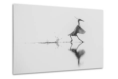 Dancing on the Water-mauro rossi-Metal Print