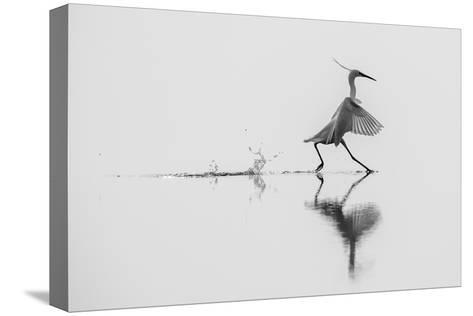 Dancing on the Water-mauro rossi-Stretched Canvas Print