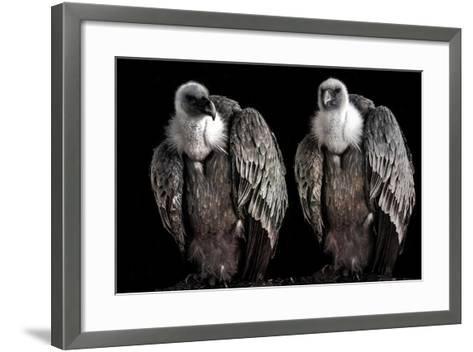 Waiting...-Ana Riaza Jorge-Framed Art Print