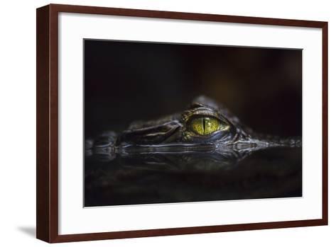 Hypnotic-Gaetano Cessati-Framed Art Print