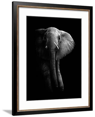 Elephant!-WildPhotoArt-Framed Art Print
