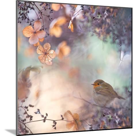 Hydrangea Fantasy- Teuni-Mounted Photographic Print