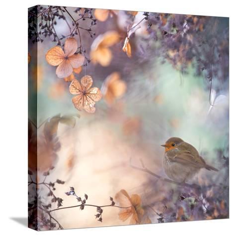 Hydrangea Fantasy- Teuni-Stretched Canvas Print