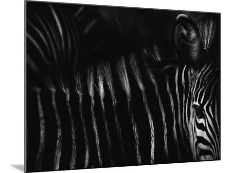 Untitled-Antonio Grambone-Mounted Photographic Print