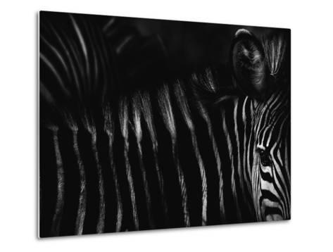 Untitled-Antonio Grambone-Metal Print