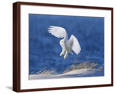 White Spirit Demon-Wei Tang-Framed Art Print