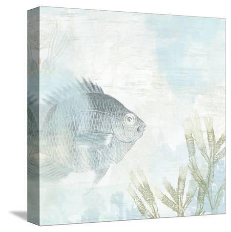 Coastal Fresco I-June Vess-Stretched Canvas Print