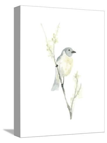 Avian Impressions III-June Vess-Stretched Canvas Print