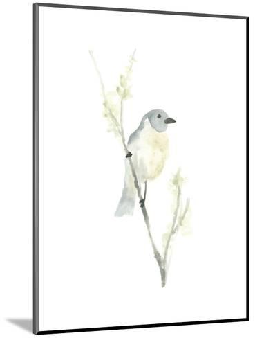 Avian Impressions III-June Vess-Mounted Art Print