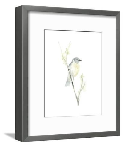 Avian Impressions III-June Vess-Framed Art Print