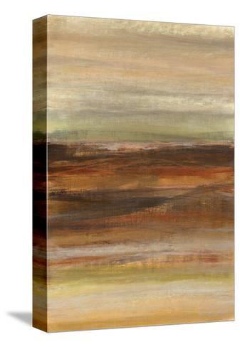 Dream Day I-Jeni Lee-Stretched Canvas Print