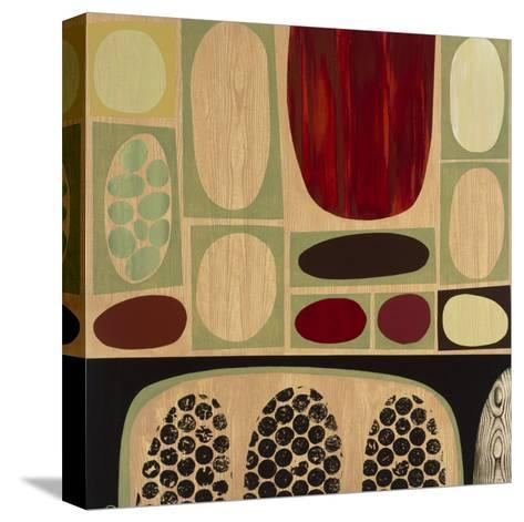 Synergy II-Mary Calkins-Stretched Canvas Print