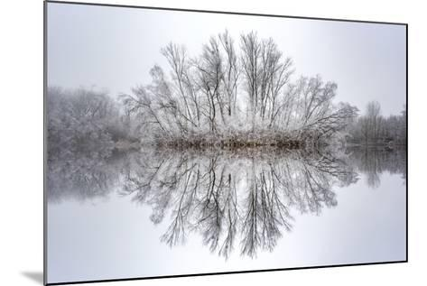 Equanimity-Philippe Sainte-Laudy-Mounted Photographic Print
