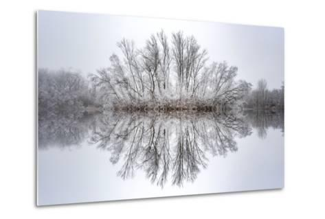Equanimity-Philippe Sainte-Laudy-Metal Print