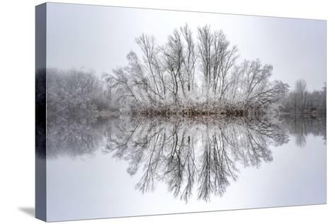 Equanimity-Philippe Sainte-Laudy-Stretched Canvas Print