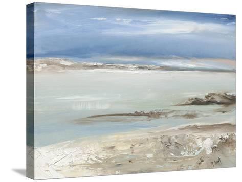 Iceberg II-Michele Gort-Stretched Canvas Print
