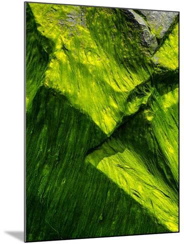 Astoria Rock-Steven Maxx-Mounted Photographic Print