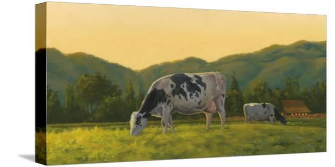 Farm Life III-James Wiens-Stretched Canvas Print