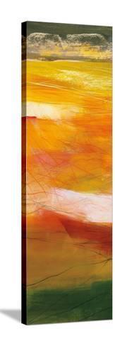 Bog Journey II v2-Jo Maye-Stretched Canvas Print