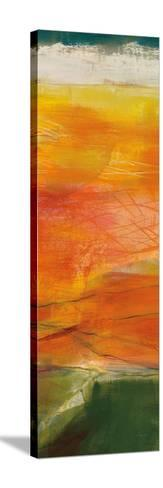 Bog Journey III v2-Jo Maye-Stretched Canvas Print