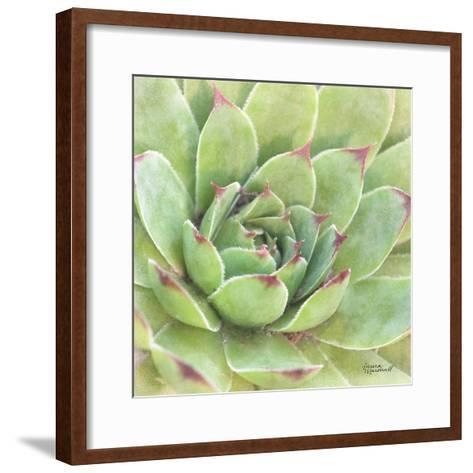 Garden Succulents IV Color-Laura Marshall-Framed Art Print