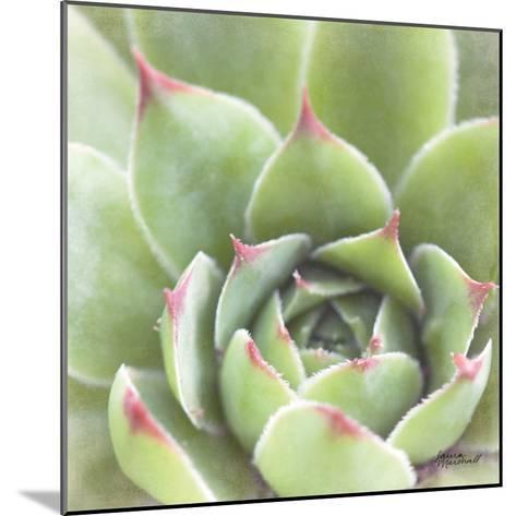 Garden Succulents III Color-Laura Marshall-Mounted Art Print