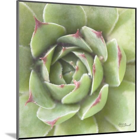Garden Succulents II Color-Laura Marshall-Mounted Art Print