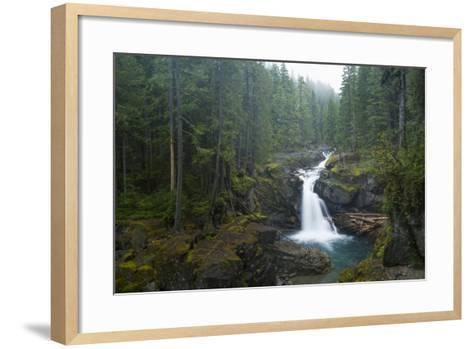 Silver Falls On The Ohanapecosh River In Mt. Rainier National Park, WA-Justin Bailie-Framed Art Print