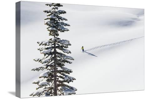 Skiing Off Of Cody Peak During A Sunny Morning In The Teton Backcountry-Jay Goodrich-Stretched Canvas Print