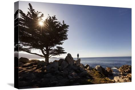 17-Mile Drive, Del Monte Forest, CA, USA: Man Standing On Cliff Looking Out Ocean Pescadero Point-Axel Brunst-Stretched Canvas Print