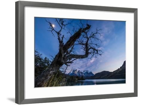 Chile, Magallanes Region, Torres Del Paine National Park, Lago Pehoe, Landscape, Dawn-Jay Goodrich-Framed Art Print