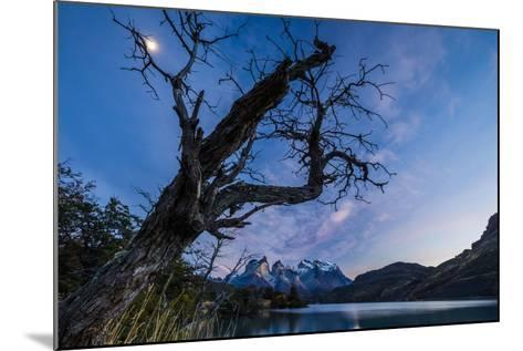 Chile, Magallanes Region, Torres Del Paine National Park, Lago Pehoe, Landscape, Dawn-Jay Goodrich-Mounted Photographic Print