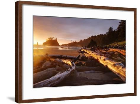 The Warm Light Of Fading Day Lights Up The Wood Left On Second Beach In Olympic NP, Washington-Jay Goodrich-Framed Art Print