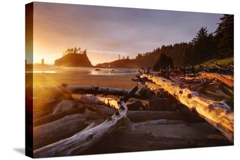 The Warm Light Of Fading Day Lights Up The Wood Left On Second Beach In Olympic NP, Washington-Jay Goodrich-Stretched Canvas Print