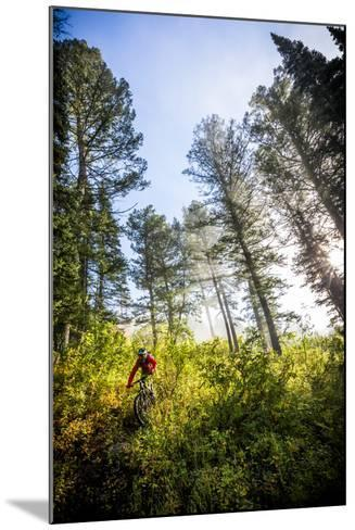 Mountain Biker Descends The Parallel Trail On Teton Pass Near Wilson, Wyoming-Jay Goodrich-Mounted Photographic Print