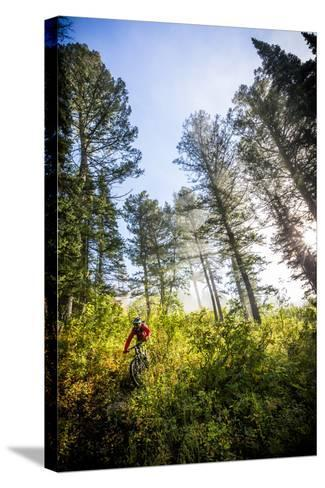 Mountain Biker Descends The Parallel Trail On Teton Pass Near Wilson, Wyoming-Jay Goodrich-Stretched Canvas Print