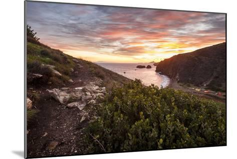 Santa Cruz, Channel Islands NP, CA, USA: View Along Coast And Over Scorpion Harbor During Sunrise-Axel Brunst-Mounted Photographic Print
