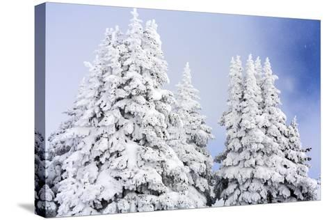 A Clearing Winter Storm In Winter In Vail, Colorado-Jay Goodrich-Stretched Canvas Print